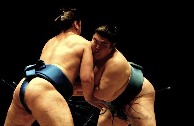 penisuri de sumo după un curs de steroizi nu există erecție